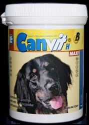 Канвит (Н) Биотин Макси Таблетки биотина для собак крупных пород
