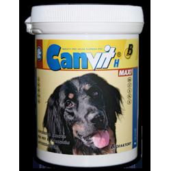 Кормовая добавка для крупных пород собак Канвит Биотин (Н) Макси